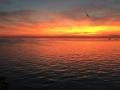 40.sunset_5189-800.jpg